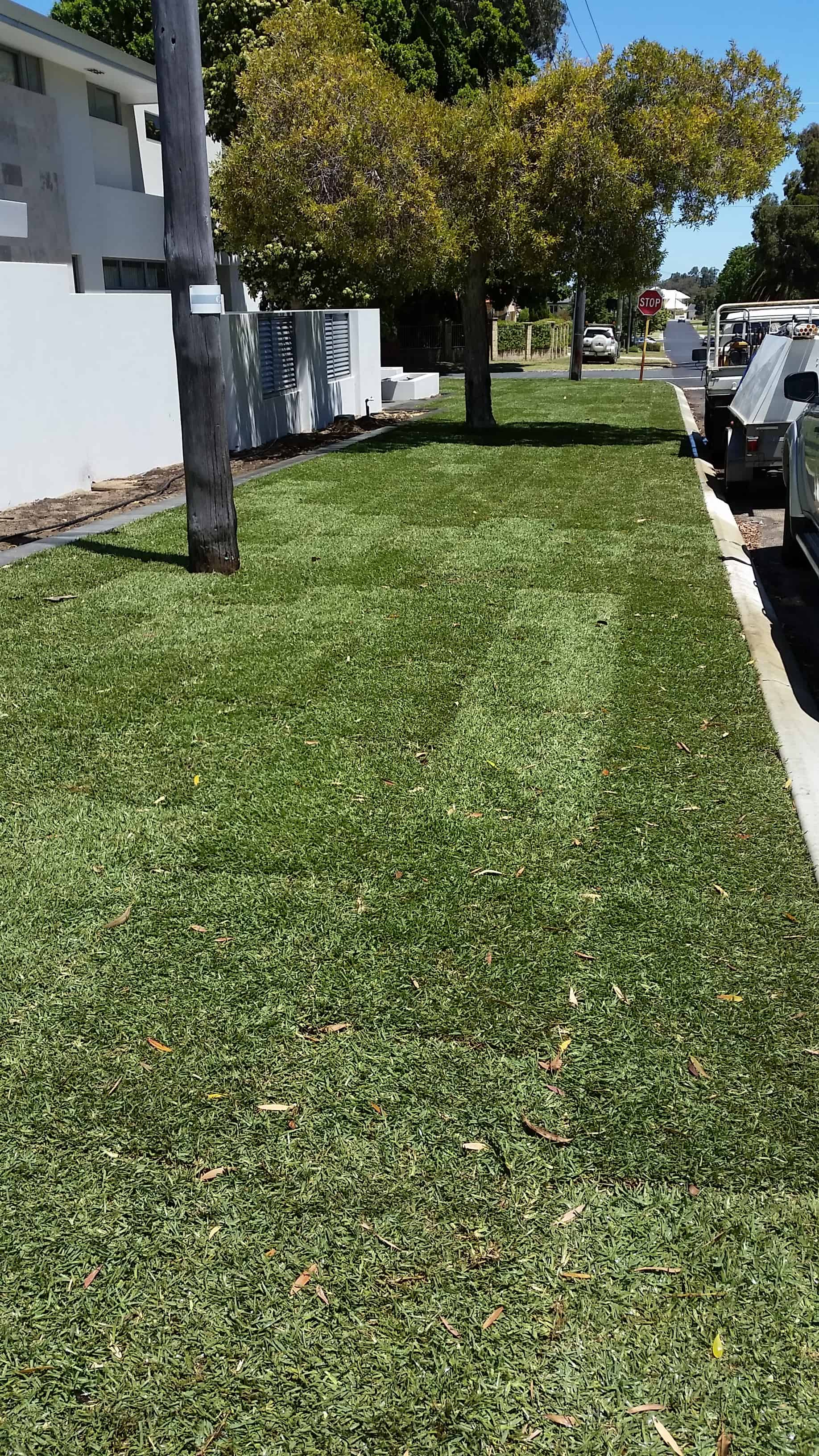 Expert Turf Installation Services Perth