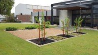 Commercial Lawn Installation and Maintenance Perth