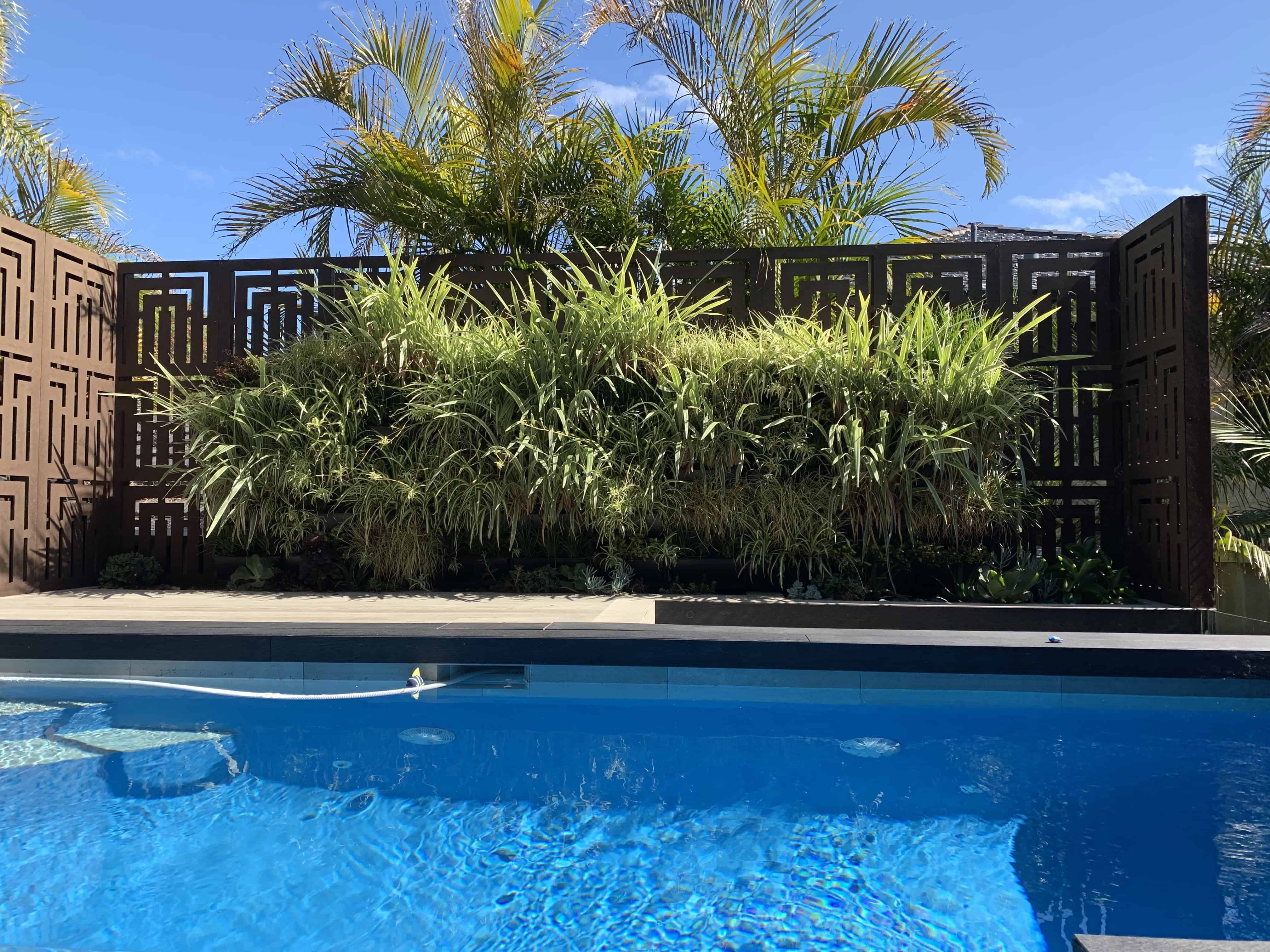 Swimming Pool with Wood Retaining Wall and Green pointed plants