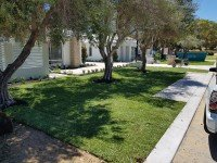 Expert Lawn Installation Services at Perth