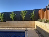Limestone Retaining Walls and Pool Paving Perth
