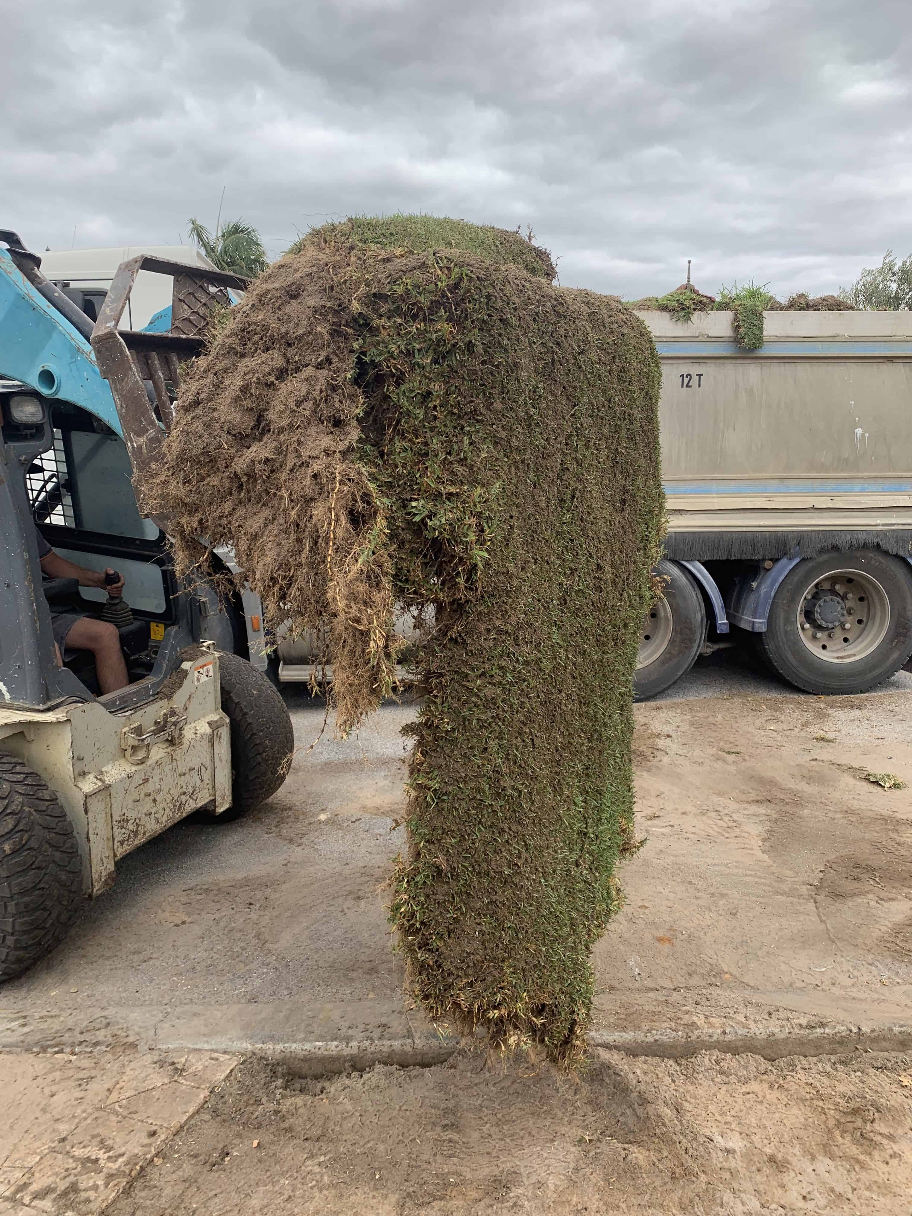 An earth moving equipment lifting an old sod